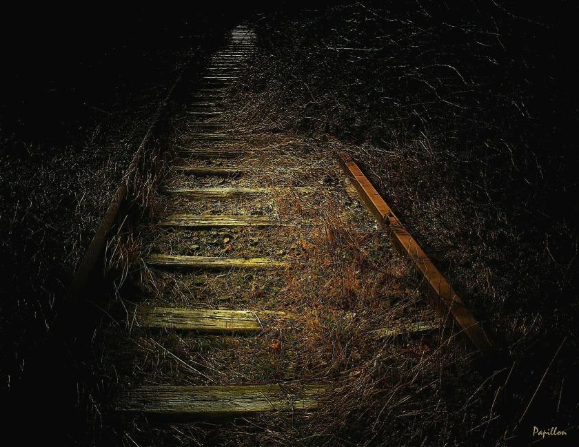 track-255508_1920