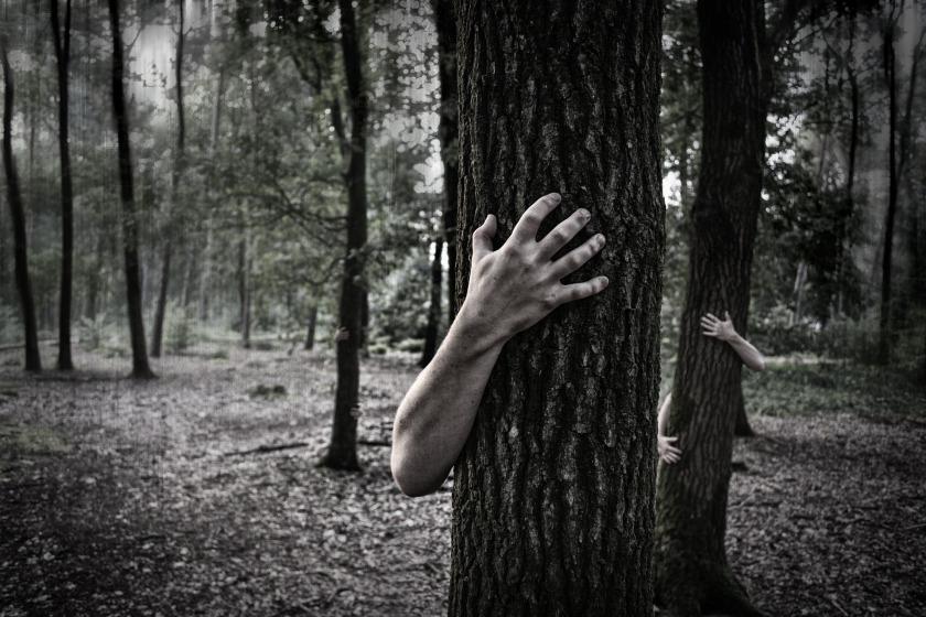 hands-984032_1920